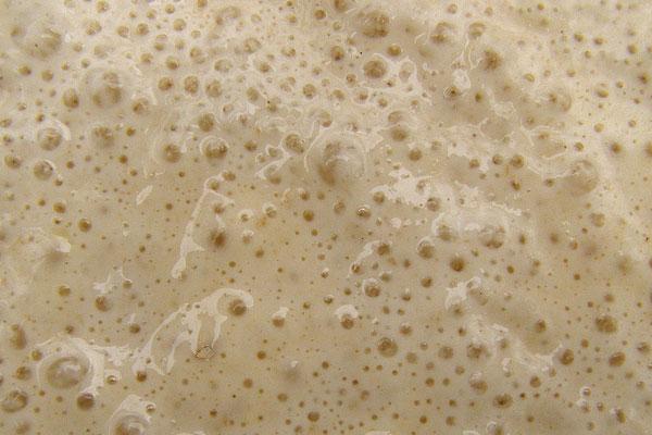 WafflePantry-yeast